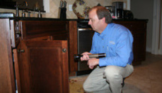 Pest Removal Services