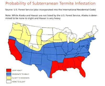 Termite Fact Map